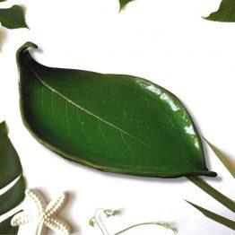 mydelniczka ceramiczna rękodzieło zielony liść arteliu sklep z prezentami
